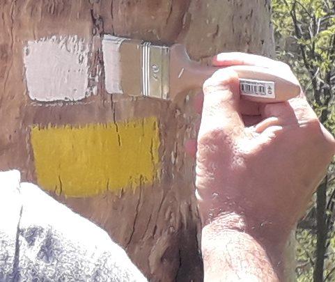 marcado de un Sendero Homologado mantenimiento de rutas y senderos en bizkaia alava araba gipuzkoa cantabria burgos soria asturias