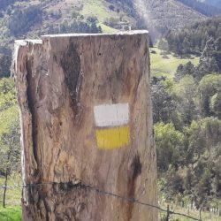 Senbide marcado de un Sendero Homologado mantenimiento de rutas y senderos en bizkaia alava araba gipuzkoa cantabria burgos soria rioja asturias