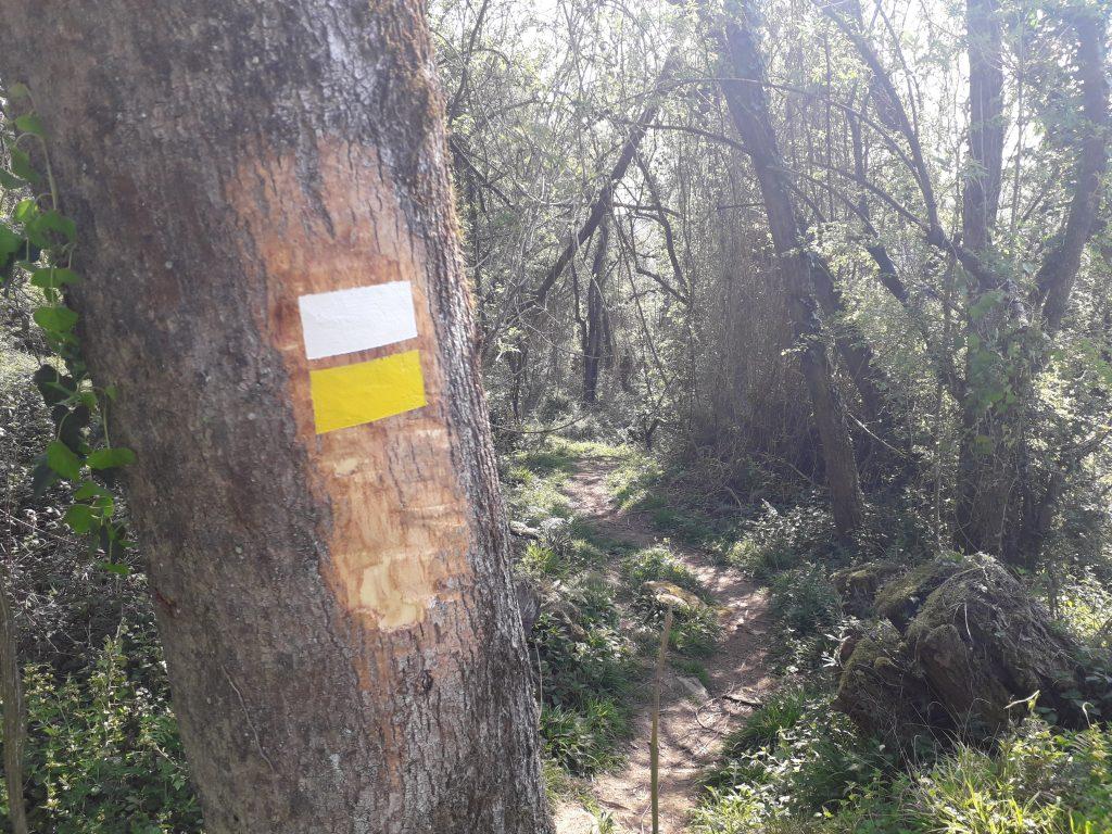 Ejecución de un sendero señalizacion de rutas y senderos en bizkaia araba gipuzkoa cantabria la rioja soria navarra folleto de orednes empresa de señalizacion de rutas