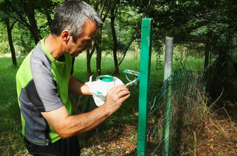 instalacion-de-puerta-para-sendero-en-bizkaia-con-paso-para-animales-mantenimiento-de-sendero